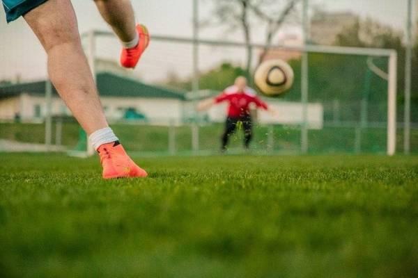 Chemievrij sportveldenbeheer